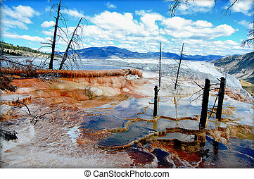 Hot waters of Canary Spring of the Mammoth Hot Springs in...
