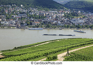 Vines and barges River Rhine Valley - Grape Vines and river...