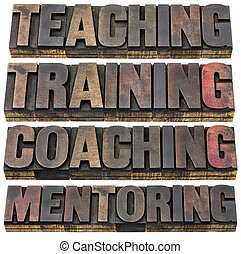 teaching, training, coaching and mentoring - a collage of...