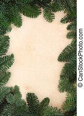 Winter Fir Leaf Border