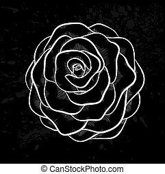 white rose outline with gray spots on a black background.