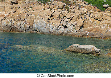 Sea of Giglio island - Campese