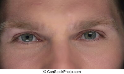 Cunning Look - Extreme close up of male eyes