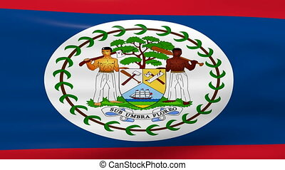 Waving Belize Flag, ready for seamless loop.