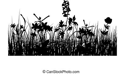 grass silhouettes - Vector grass silhouettes background for...