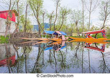 Shikara boat reflection on Dal lake Srinagar, Jammu&Kashmir Indi