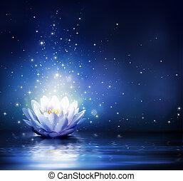 magia, flor, água, -, azul