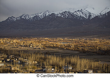 Leh - A winter view of Leh district in the morning, Ladakh,...