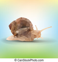 triangle garden snail on a white background