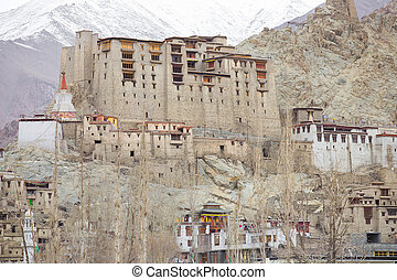 Leh - Detail from old town - Leh - Ladakh - Jammu and...