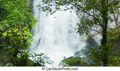 Water falls down from a great height Forest waterfall in...