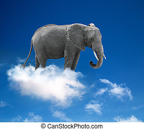 elephant in the clouds - lightness and fantasy concept