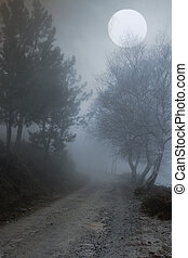 Abyss - Misty mountain road that borders a precipice