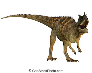 Ceratosaurus on White - The Ceratosaurus is a horned...