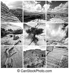 Sand Canyon - Utah - Collage of Sand Canyon Utah Nature...