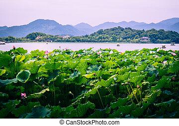 Hangzhou city - Hangzhou is a beautiful city in Zhejiang...