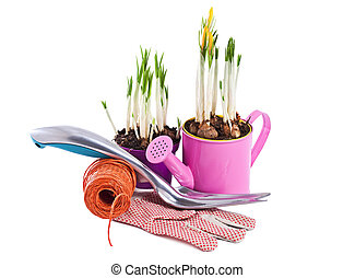 Spring flowers and garden tools isolated on white