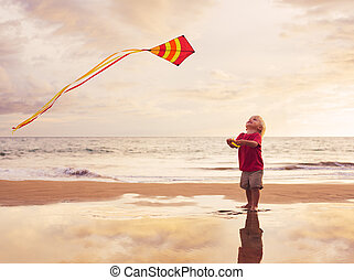 Young boy playing with kite - Happy young boy flying kite on...