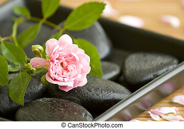 wellness - black stones with water drips and a beautiful...
