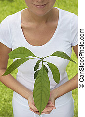 Green Living Concept - Woman holding a seedling in front of...