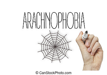 Hand writing arachnophobia on a white board