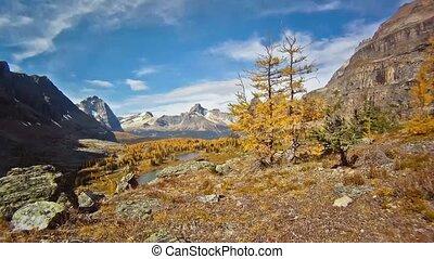 Autumn Mountains View