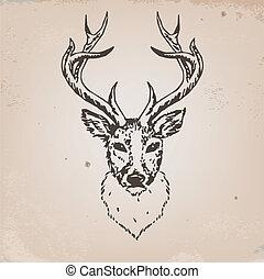 deer head - Artistic sketch of deer head. Vector...