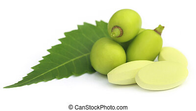 Medicinal neem fruits with tablets