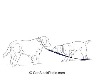 Beach Collection Come on In - A line drawing of two dogs...