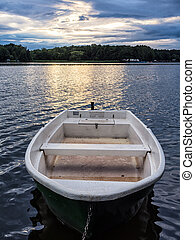 Rowing boat - A rowing boat on a lake.