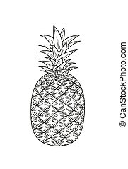 ananas, sketch - sketch of the ananas with leaves, vector,...