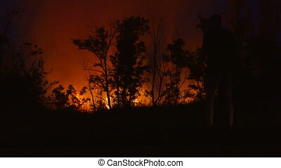 Wild fire near the road at night