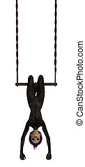 Clown Hanging Upside Down On A Trapeze - Clown handing...