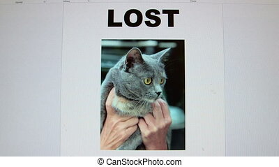 Lost pet sign with image of cat