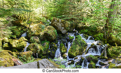 Watson Falls, Oregon - Series of cascades at the base of...