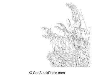 Beach Collection Sea Oats - A line drawing of sea oats on...
