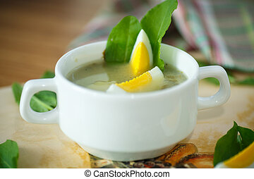 sorrel soup in a bowl with egg