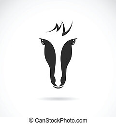 Vector image of an horse face on white background
