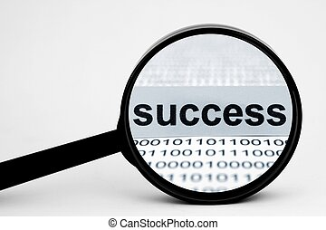 Search for success