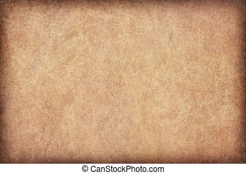 Animal Skin Parchment Grunge Texture Sample - Photograph of...