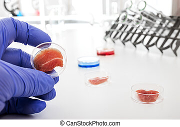Meat cultured in laboratory conditions from stem...