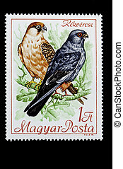 Two birds on Hungarian postage stamp - Hungarian bird series...