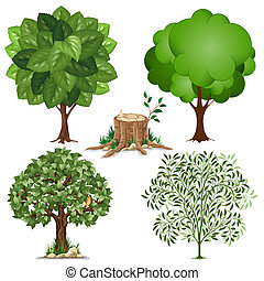 Set of trees pictured in different style and stump