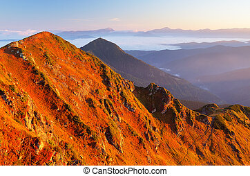 Sunny morning in the mountains - Autumn Landscape with red...