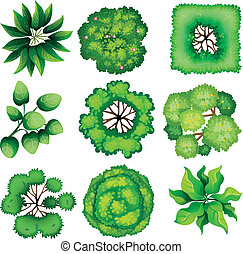 Topview of leaves - Illustration of the topview of leaves on...