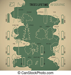 Treeinfographic - Tree lifetime infographic of duration of...