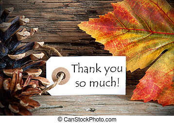 Autumn Tag with Thank You so much - An Autumn Tag with the...