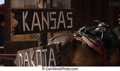 Sign to Kansas and dakota on horse background