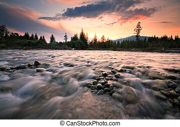 River Bela in Slovakia - River Bela on a summer evening,...
