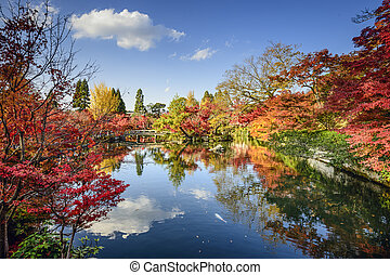 Fall Foliage in Kyoto, Japan - Kyoto, Japan fall foliage at...